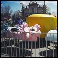 Kiddie Elephants Ride
