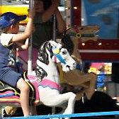 Carousel Merry-Go-Round Rental Midway Ride