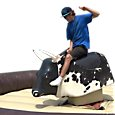 Most Mechanical Bull Rentals in Ontario. Our trained staff ensure a bucking good time